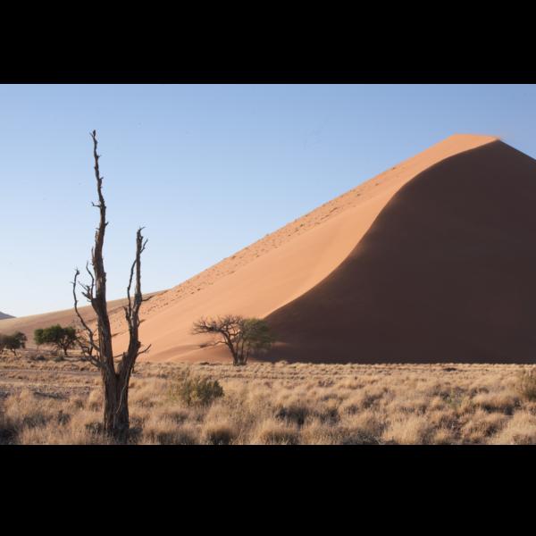 Namibian Desert Under a Blue Sky Scarf by Red Rhino Original Photo